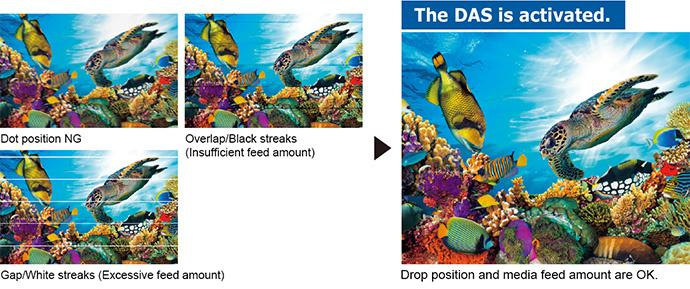 DAS (Dot Adjustment System)